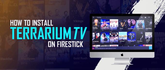 Install Terrarium TV On Firestick